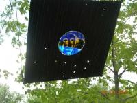 tr-may-2006-1426